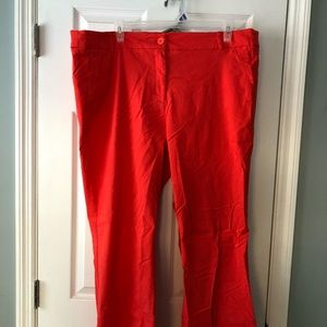 Coral bootcut/flare lane Bryant dress pants